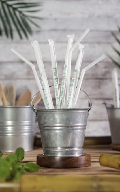 Green Kitchen 100% Biodegradable Corn Starch Straws ⌀6mm Biodegradable